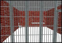Second Life Jail