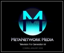 Metanetwork Logo